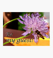 Bee my guest! Photographic Print