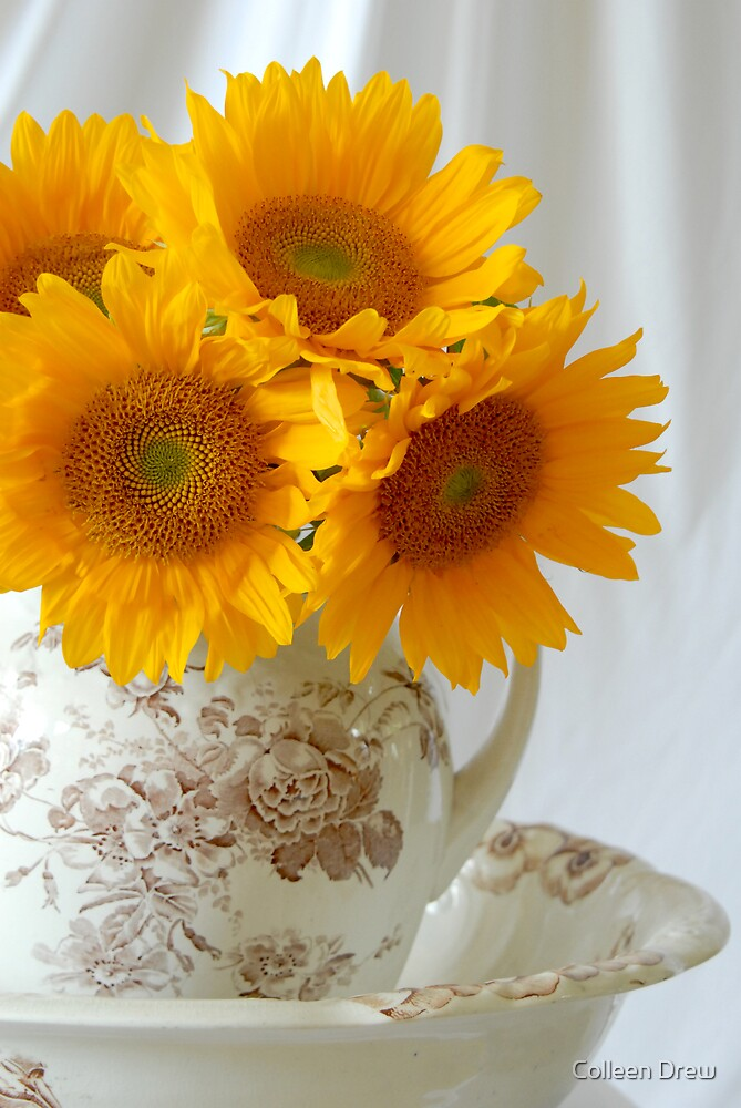 Sunflowers in Pitcher by Colleen Drew