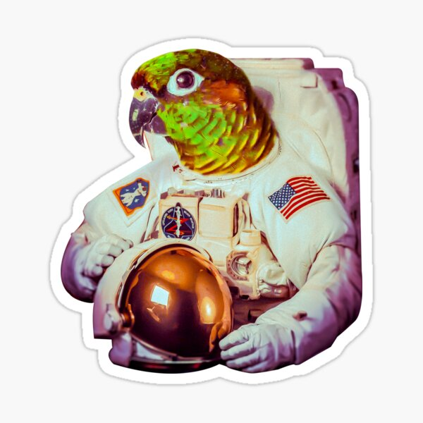 Astro Party Parrot | Green Cheek Conure  Sticker