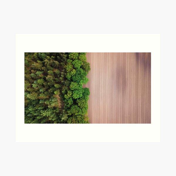 Woods & Planes Art Print