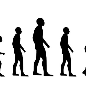 evolution by martin80