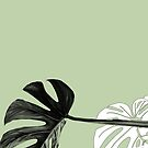 Monstera  by LucySchmidtArt