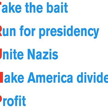 Trumps Plan by christopper