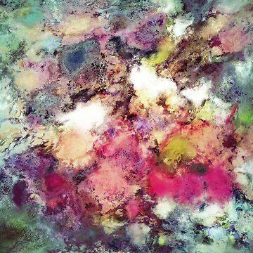 Raspberry rocks by KeithMillsArt