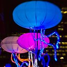 The Jellies! - Sydney Vivid Festival - Australia by Bryan Freeman