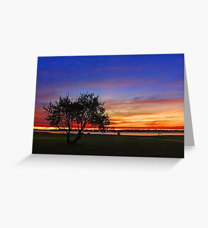 Tree At Dusk  Greeting Card