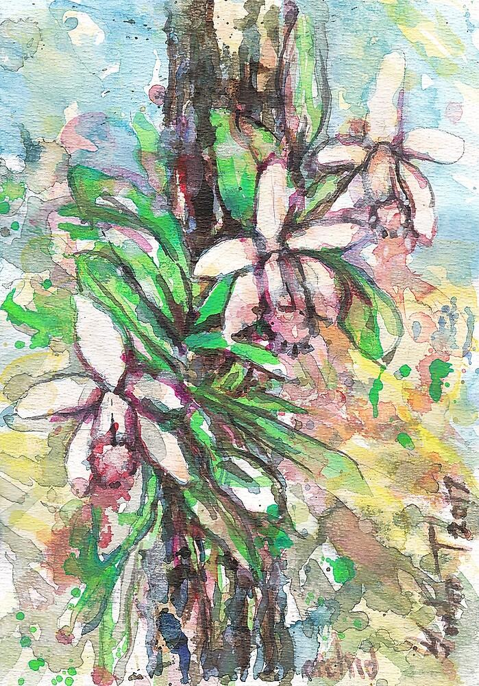 orchid by gordonartist1
