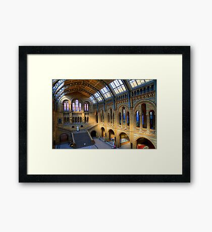 Natural History Museum - A Different Side - London Framed Print
