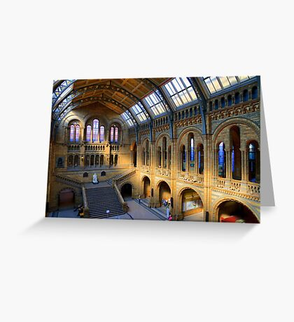 Natural History Museum - A Different Side - London Greeting Card