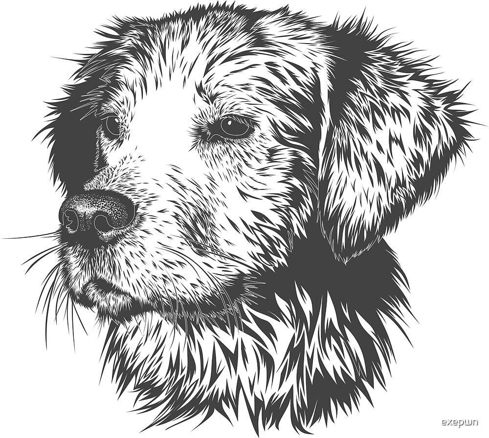 Dog by exepwn