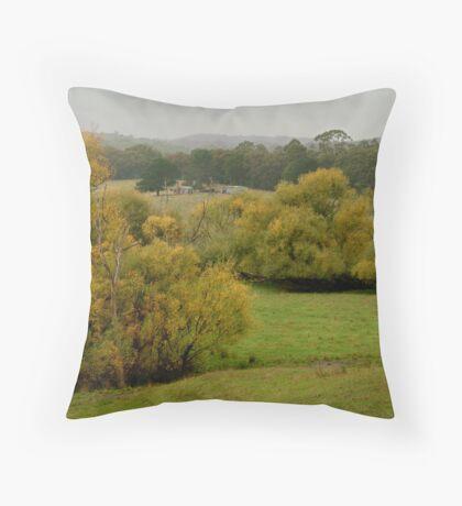Autumn Rain, Otway Ranges,Forrest,Victoria Throw Pillow