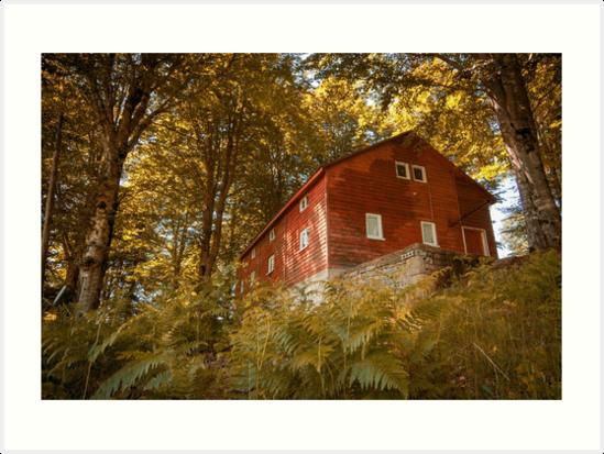 Wood House by EinMM by EinMM