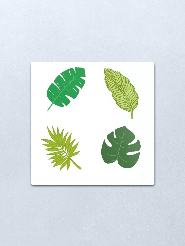 Tropical Leaf Tumblr Drawing Metal Print By Simonsdesign Redbubble 429 x 750 jpeg 120 кб. redbubble