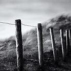 Wuthering Heights by Joel Tjintjelaar