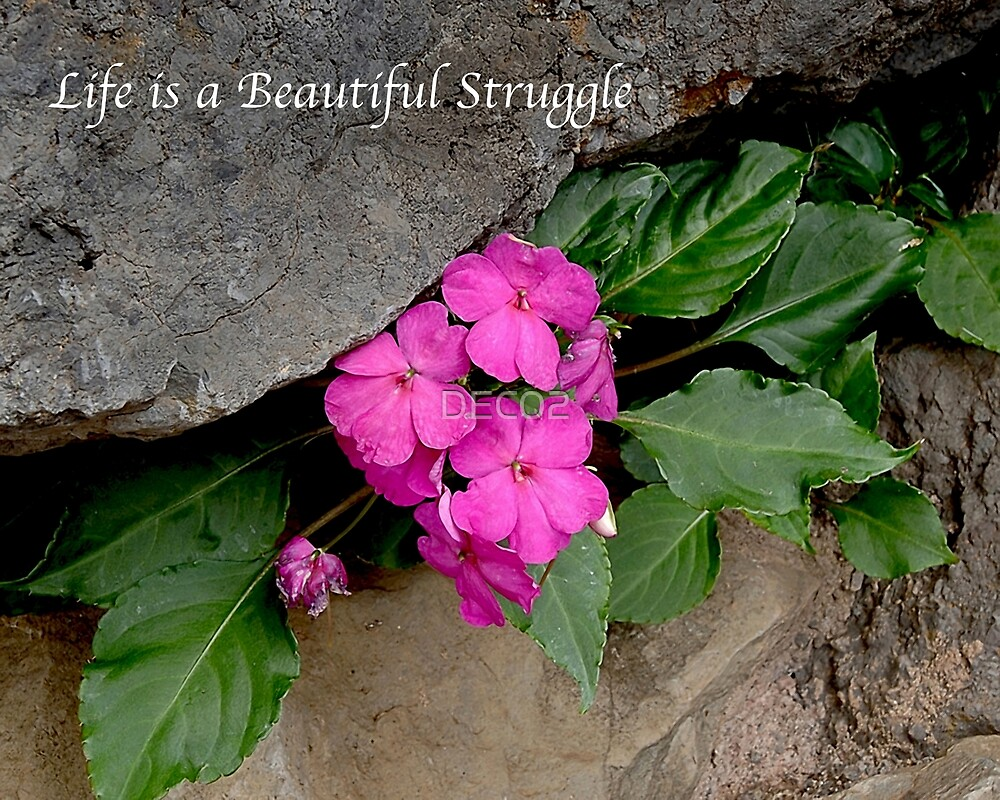Life is a Beautiful Struggle by DEC02