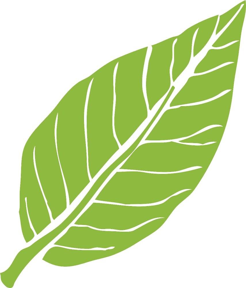 foliage leaf by eics