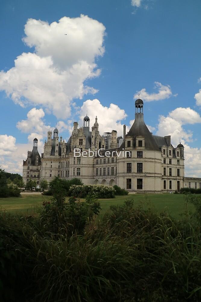 Europe, France, Loire, castles, Chambord, photography, BebiCervin by BebiCervin