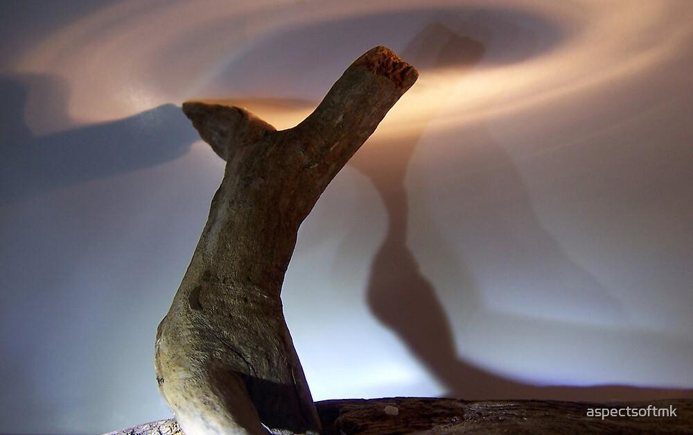 wood, you dance..2 by aspectsoftmk