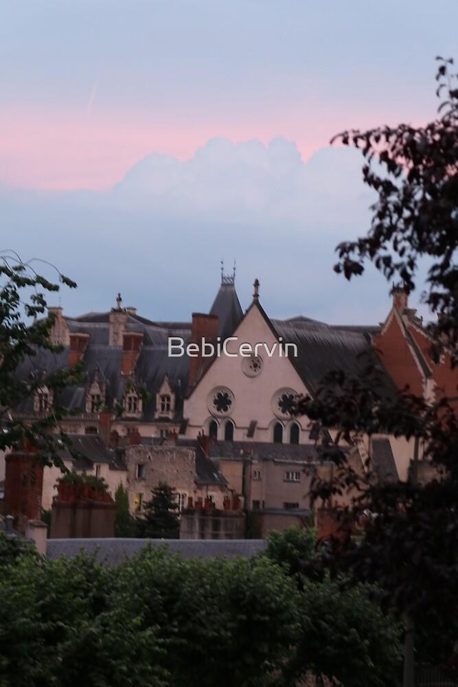 Europe, France, Blois, Old Town, Sunset, Photography, BebiCervin by BebiCervin