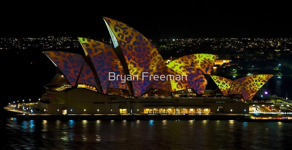 The Leopard - Sydney Opera House - Australia by Bryan Freeman