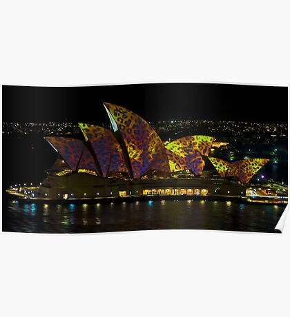 The Leopard - Sydney Opera House - Australia Poster
