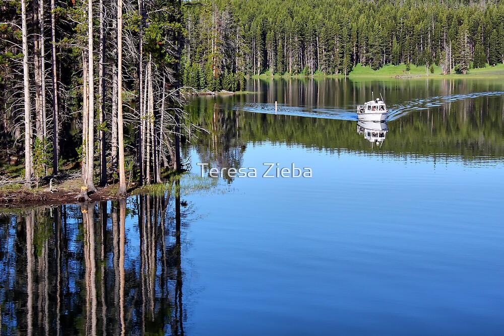 Morning Reflections by Teresa Zieba