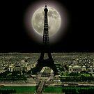 The Eiffel Tower.  by albutross