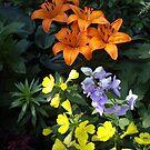 Garden Joy by Rusty Katchmer