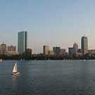 Boston Skyline by Susan Misicka