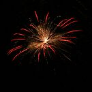 Michigan Fireworks  by Leslie Patton