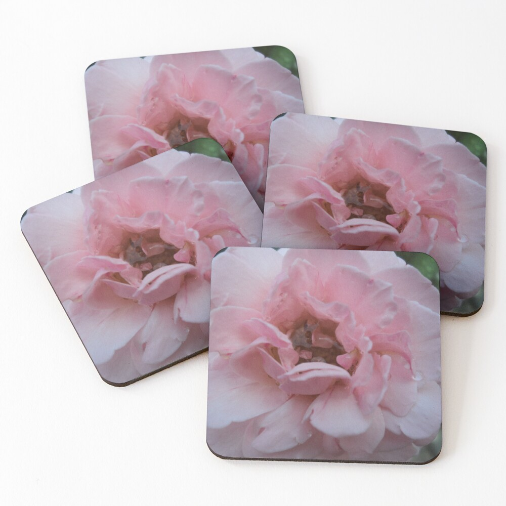 Bliss Coasters (Set of 4)
