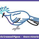 Victoria Crowned Pigeon by David Orr