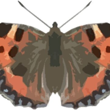 Cute Butterfly Print Design by MintyBadger123