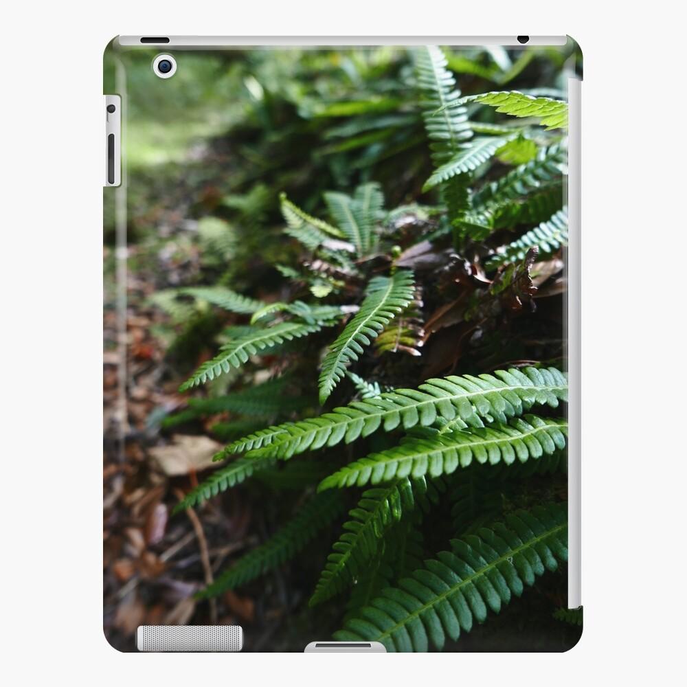 Hard Fern (Blechnum spicant) iPad Case & Skin