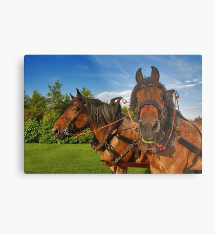 Are you talking about me....? Metal Print
