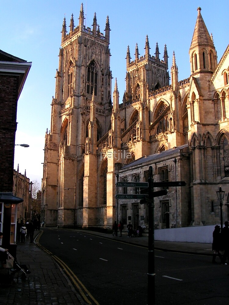 Glorious cathedral York Minster in York by patjila