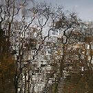 autumn reflections by codaimages