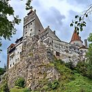 Dracula's Castle by Lanis Rossi