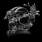 Bird Skull by Logetero