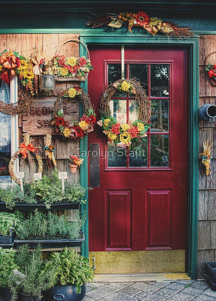 The Flower Shop by Carolyn Staut