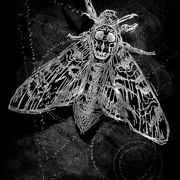 Deaths head moth by CJOrazi