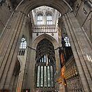 York Minster by Peter Hammer