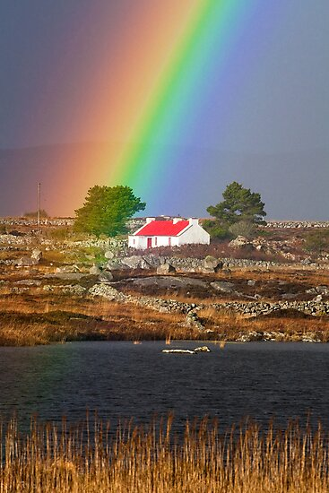 Red Roof cottage by celticpics