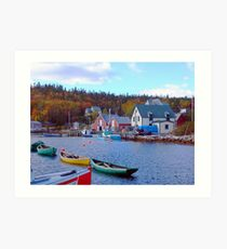 North West Cove Art Print