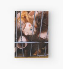 Dolls in Cages Hardcover Journal