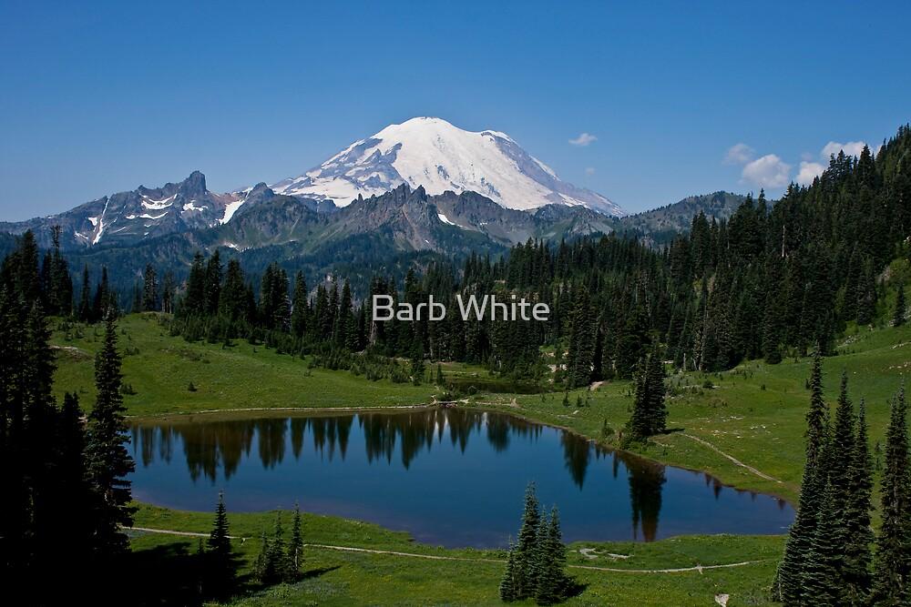 Mt. Rainier and Tipsoo Lake (Mt. Rainier National Park) by Barb White