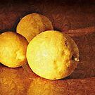 Three Lemons by © Helen Chierego