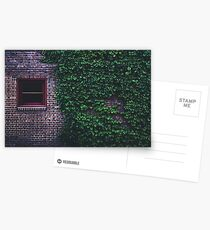 Texture Brick wall red bricks with climbing green vines wild plants and rustic red wooden window vintage grunge style urban pattern Postcards