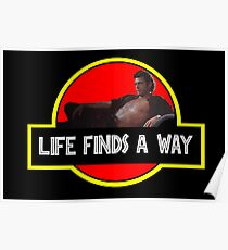 Life Finds A Way Poster