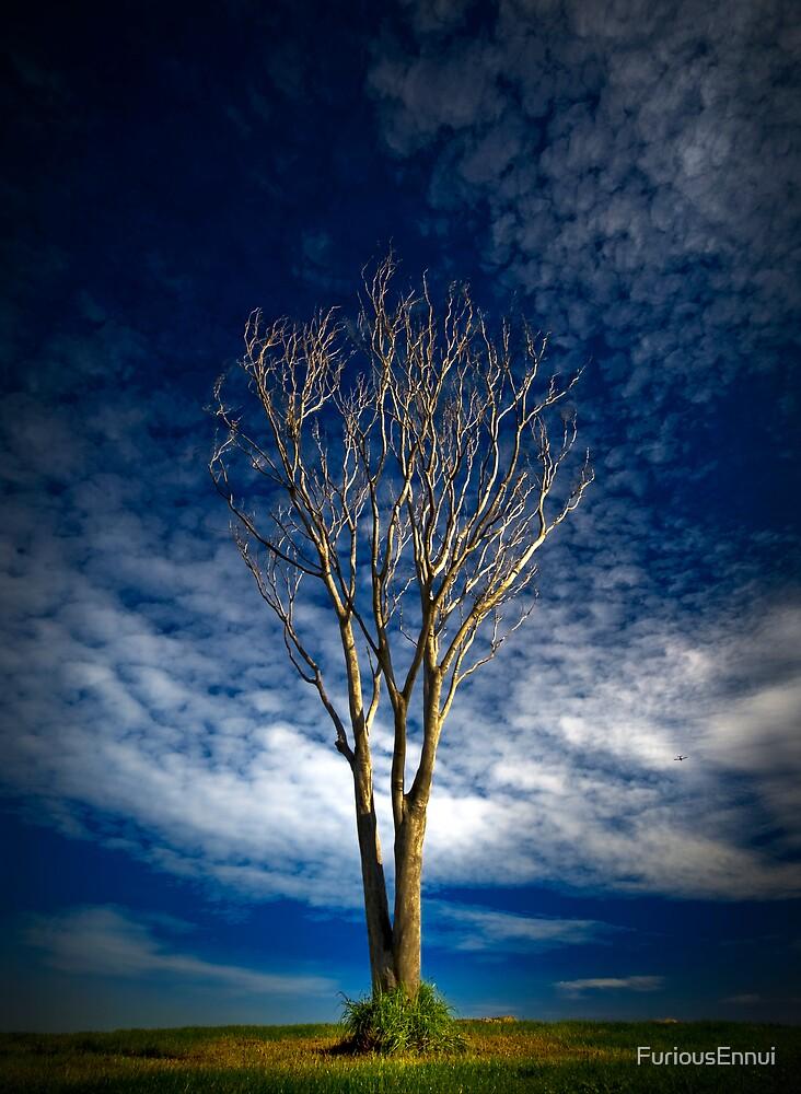 Tree and Plane by FuriousEnnui